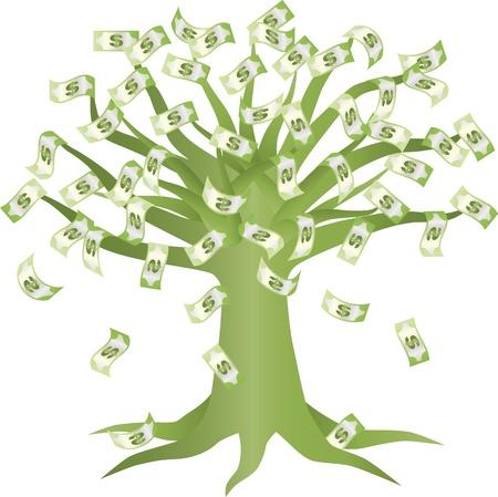 Geld wächst auf Green Tree Illustration auf weißem Hintergrund Standard-Bild - 13860519
