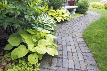 mugo: Garden Cement Paver Brick Path with Grass Lawn and Hosta Plants Stock Photo