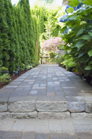 hardscape: Garden Pavers Path Walkway with Landscaping Lights Leading to Backyard Stock Photo