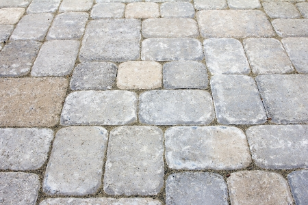 pavers: Garden Backyard Concrete Stone Brick Pavers Patio Closeup Stock Photo