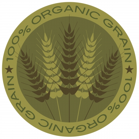 Wheat Grain Stalk with 100  Organic Grain Label Illustration Vector