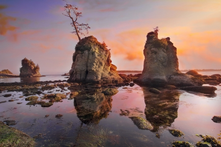 sow: Sunset Over Pig and Sow Inlet Rocks at Garibaldi Oregon Coast