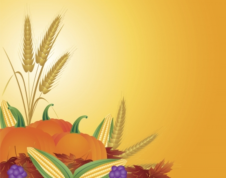 Fall Harvest with Wheat Grain Pumpkins Corns Grapes and Leaves Illustration Vector