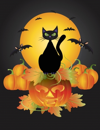 Halloween Black Cat Sitting on Carved Jack-O-Lantern Pumpkin with Moon and Bats Illustration