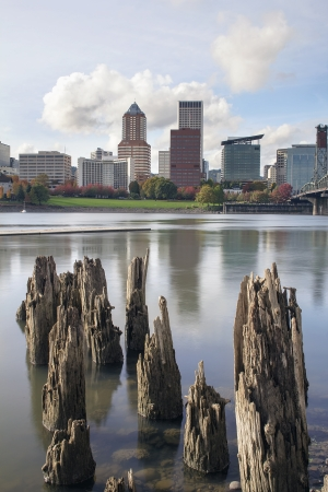 portland oregon: Portland Oregon Downtown City Skyline from the Waterfront of Willamette River