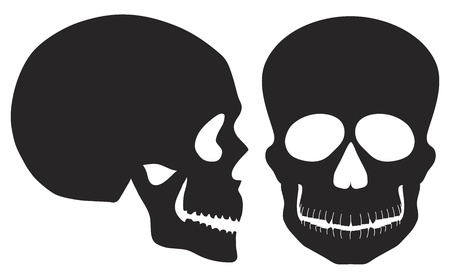 Skulls Front and Side View Black and White Illustration Isolated on White Background Vector