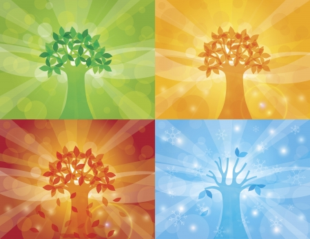 four season: Four Seasons Spring Summer Fall Winter Trees with Sun Rays Background Illustration Illustration