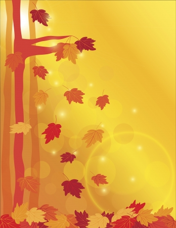 Falling Maple Tree Leaves with Sun Beams and Bokeh in Forest Background Illustration 向量圖像