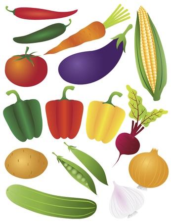 Groenten Tomaat Paprika Chili Wortel Aubergine Aardappel Peapod Peas ui knoflook Beet Corn Illustratie