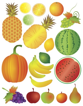 Fruits Pineapple Orange Lime Apple Banana Pumpkin Pear Peach Plum Grapes Illustration Isolated on White Background Stock Vector - 16403095