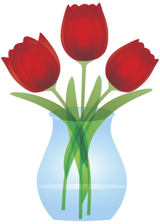 Red Tulips Bouquet Flowers in Glass Vase for Mothers Day or Easter Illustration Isolated on White Background