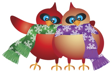 female cardinal: Christmas Cardinal Male and Female Pair with Snowflakes Scarf Illustration Isolated on White Background