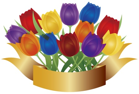 tulips isolated on white background: Colorful Tulip Flowers for Easter or Mothers Day with Gold Label Banner Isolated on White Background Illustration