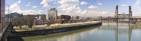ponte giapponese: Cherry Blossoms Alberi Lungo Portland Oregon Waterfront fiume Willamette con ponti storici in primavera Stagione Panorama