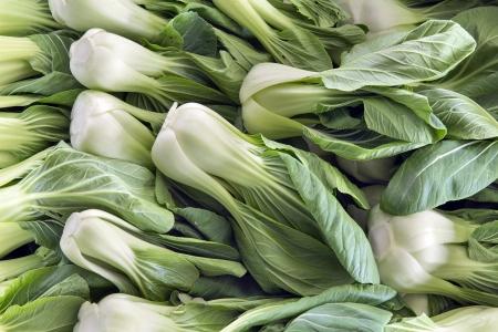 repollo: Col china Bok Choy verduras blancas en mercado mojado en el sudeste de Asia