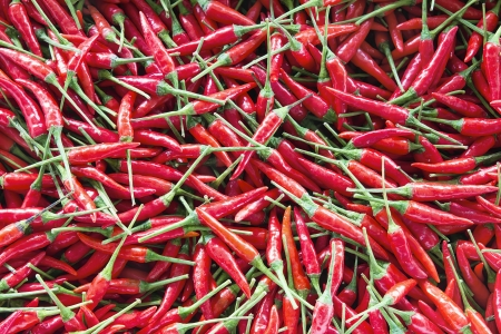Thai Fresh Red Chili Peppers Background photo