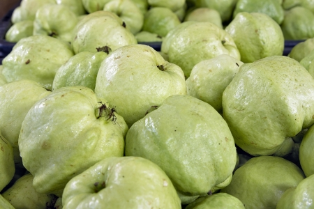 myrtaceae: Green Apple Guavas in Southeast Asian Market