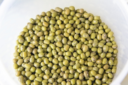 Green Whole Mung Beans in Plastic Container Stock Photo - 19160154