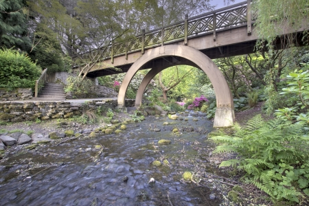 Steps to the the Wooden Bridge Arches at Crystal Springs Rhododendron Garden photo