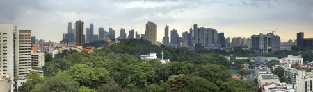 Singapore City Skyline with Lush Green Landscape Panorama