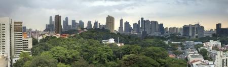 Singapore City Skyline with Lush Green Landscape Panorama Stok Fotoğraf - 19508656