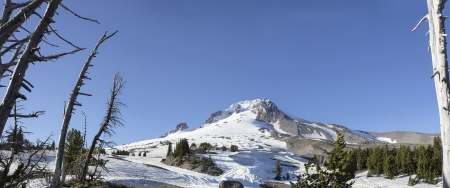 mt hood: Mount Hood with Clear Blue Sky in Oregon Panorama Stock Photo