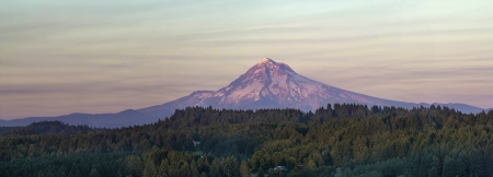 Mount Hood at Sunset Over Oregon Rural Area Landscape with Evergreen Trees Panorama photo
