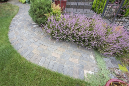 mugo: Front Yard Garden Curve Brick Paver Path with Green Grass Lawn Flowering Plants Trees and Shrubs Top View
