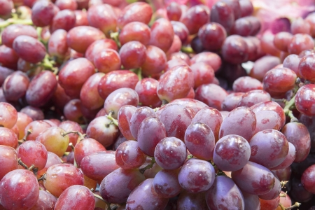 seedless: Seedless Red Grapes Bunches at Farmers Market Closeup