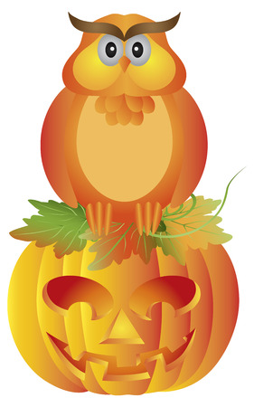 carved pumpkin: Happy Halloween Orange Fall Color Cartoon Owl Sitting on Jack O Lantern Carved Pumpkin