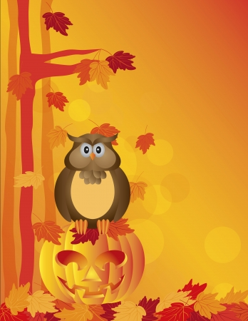 Happy Halloween Orange Fall Color Cartoon Owl Sitting on Jack O Lantern Carved Pumpkin with Fall Color Maple Tree Leaves    Vector