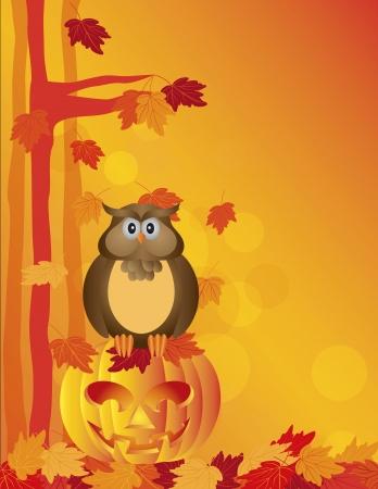 carved pumpkin: Happy Halloween Orange Fall Color Cartoon Owl Sitting on Jack O Lantern Carved Pumpkin with Fall Color Maple Tree Leaves    Illustration