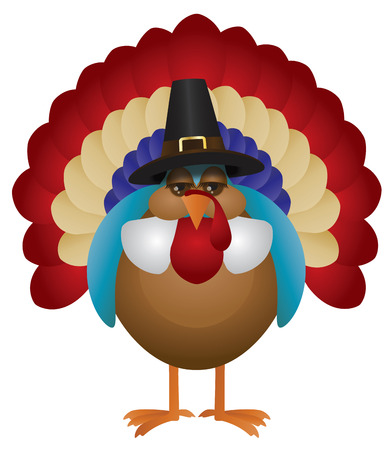 pilgrim costume: Colorful Turkey with Pilgrim Hat Cute Cartoon For Thanksgiving Isolated on White Background Illustration