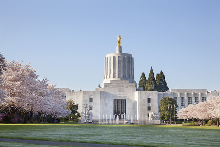 SALEM, OREGON - MARCH 23, 2014: Capitol State Building against a clear blue sky. Cherry Blossom Trees Blooming at Oregon State Capitol State Park in Salem Oregon during springtime. A tourist attraction.