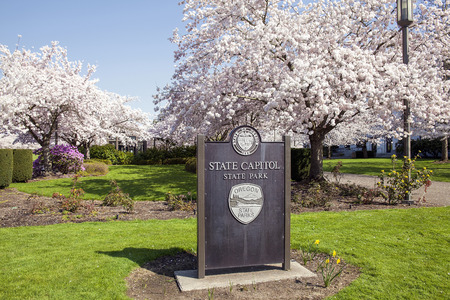 state of oregon: SALEM, OREGON - MARCH 23, 2014: State Capitol State Park Sign during Cherry Blossom Tree Blooming Spring Season. This is a free park open to the public and is a tourist attraction. Editorial