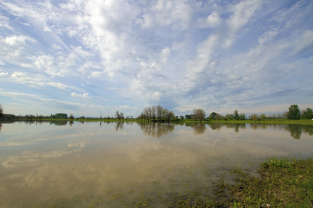 state of oregon: Sauvie Island Wildlife Area by the Cattle Farm in Portland Oregon
