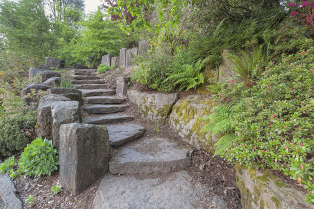 hardscape: Garden Stone Stair Steps Hardscape with Natural Rocks with Plants Trees Ferns Landscaping