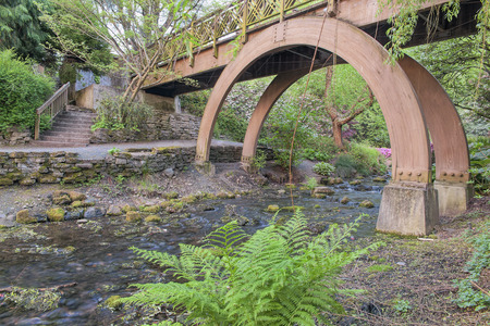Wooden Foot Bridge Over Water Creek at Crystal Springs Garden in Springtime photo