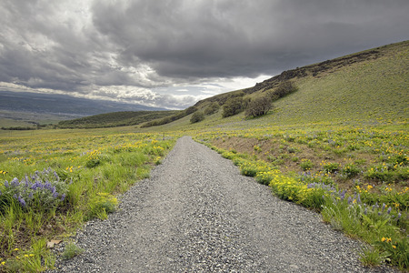 Gravel Road Hiking Trail on Columbia Hills State Park in Washington State photo