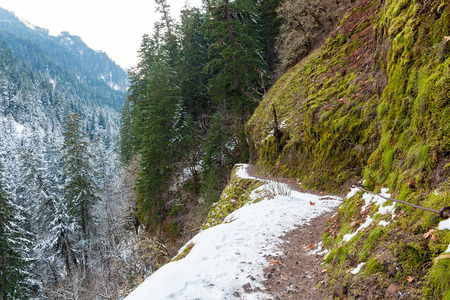 gorge: Snow Covered Eagle Creek Forest Hiking Trail at Columbia River Gorge Oregon in Winter Season Stock Photo