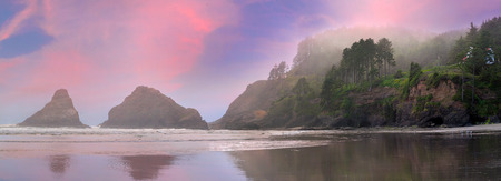 seabirds: Heceta Head Lighthouse Devils Elbow State Park and Beach at Oregon Coast on a Foggy Sunset Day Panorama