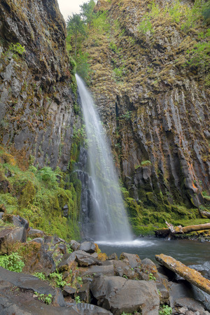 pacific crest trail: Dry Creek Falls Along Pacific Crest Trail in Columbia River Gorge National Scenic Forest in Oregon Vertical