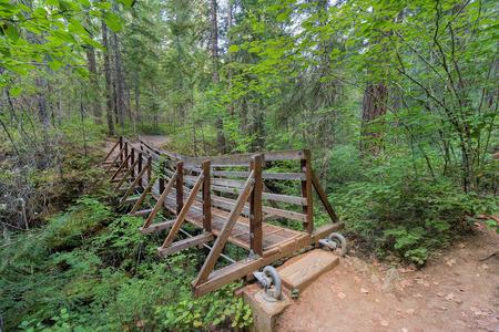 national forest: Puente colgante sobre Falls Creek en Gifford Pinchot National Trail Bosque Senderismo en el estado de Washington Foto de archivo