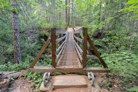 national forest: Suspension Bridge Over Falls Creek in Gifford Pinchot National Forest Hiking Trail in Washington State Front View Stock Photo