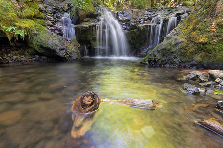united states: Emerald Falls with Driftwood along Gorton Creek in Columbia River Gorge National Scenic Area Oregon