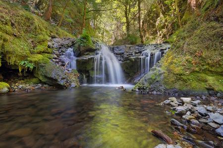 oregon cascades: Emerald Falls along Gorton Creek in Columbia River Gorge National Scenic Area Oregon Stock Photo