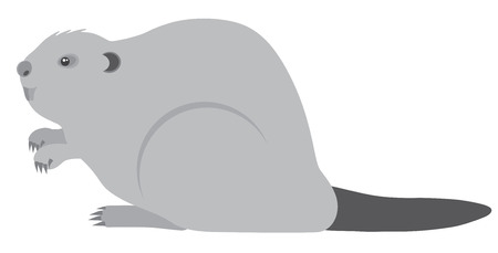 The North American Beaver Grayscale Illustration