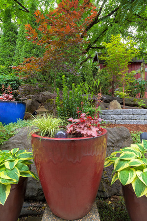 hardscape: Garden Backyard colorful container pots with plants in landscaping