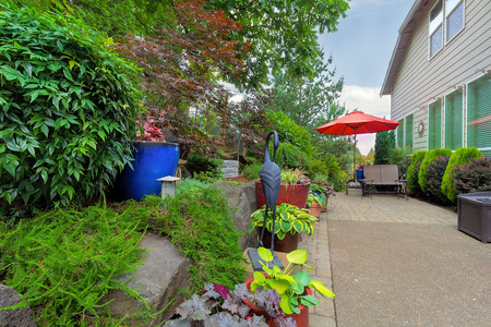 coral bell: Garden Backyard patio seating red umbrella colorful container pots with plants in landscaping