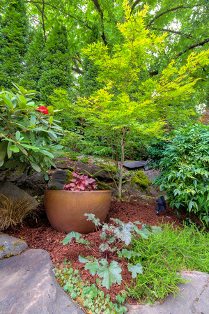 hardscape: Garden Backyard with gold pot container in landscaped yard with plants shrubs and trees Stock Photo
